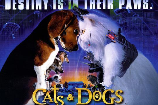 最懂孙子兵法的狗——《猫狗大战》