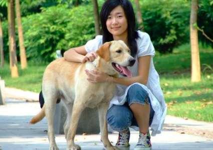 发情期引导狗狗交配的方法