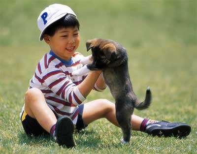 芬兰科学家研究证明:家中有狗狗,对于宝宝更有利